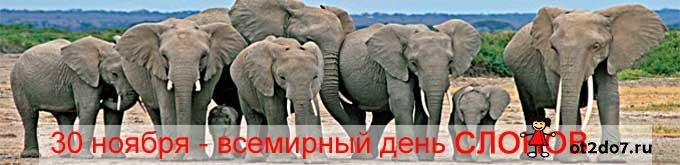 30 ноября - всемирный день слонов