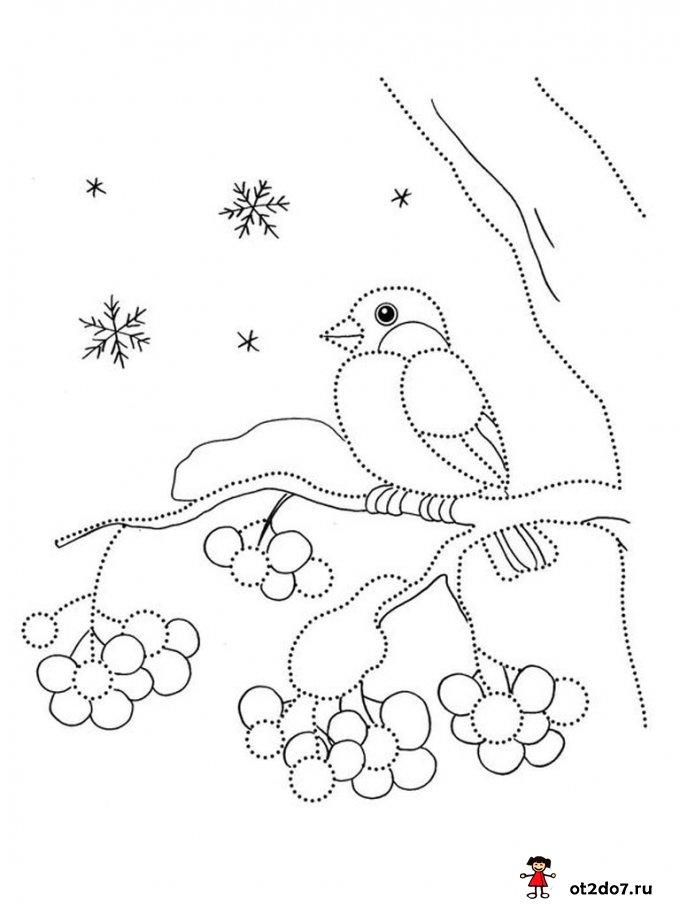 Зимние раскраски-обводилки
