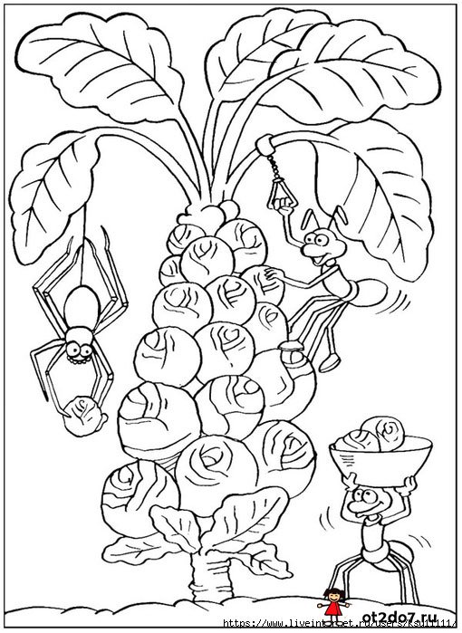 Уборка урожая. Раскраска